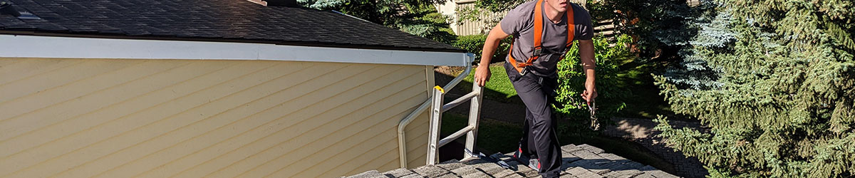 Professional assessing roof